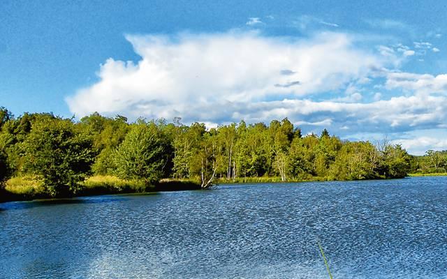 Das Störbecken der Fischzucht Hennequart in Saint-Viâtre © Solenska caviar de Sologne