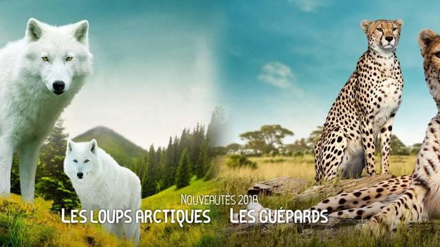 Die Tiere des ZooParc von Beauval.