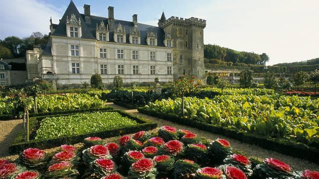 Schloss und Schlossgarten von Villandry  © Catherine Bibollet