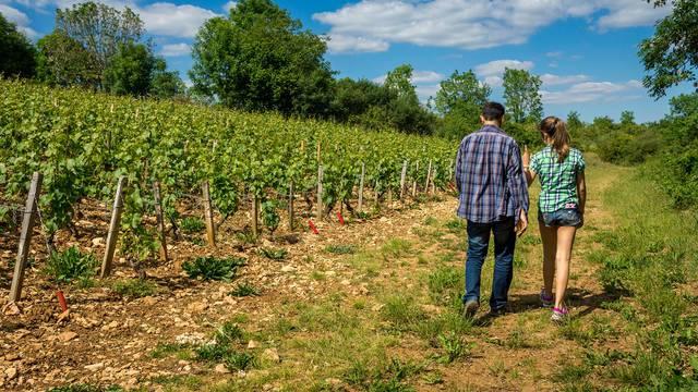 Wandertouren in Blois-Chambord