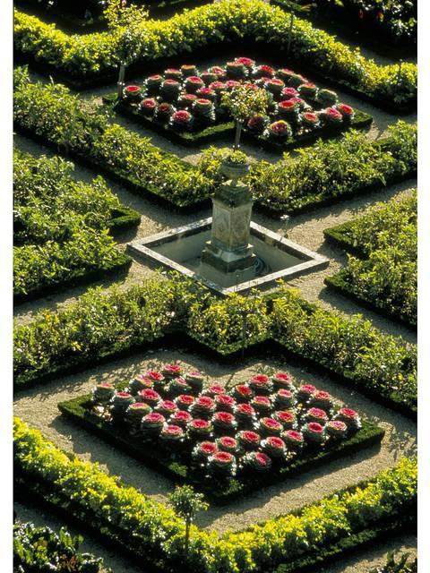 Der Garten von Villandry © Catherine Bibollet