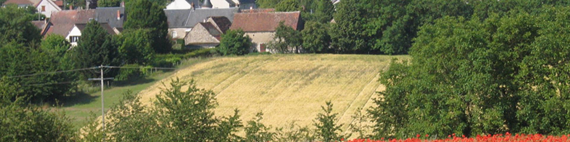 Tal der Cisse - St Lubin en Vergonnois