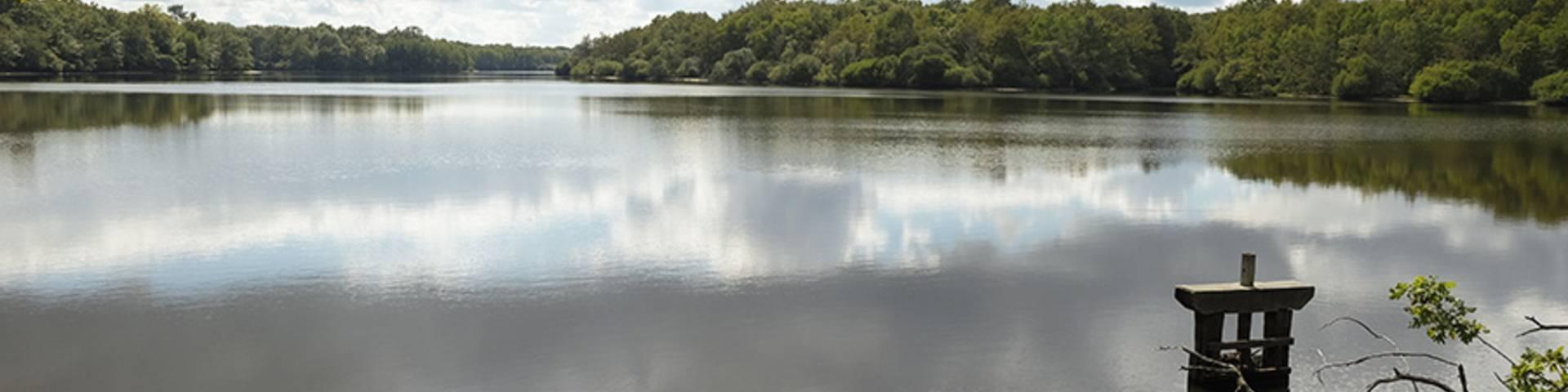 See in der Sologne