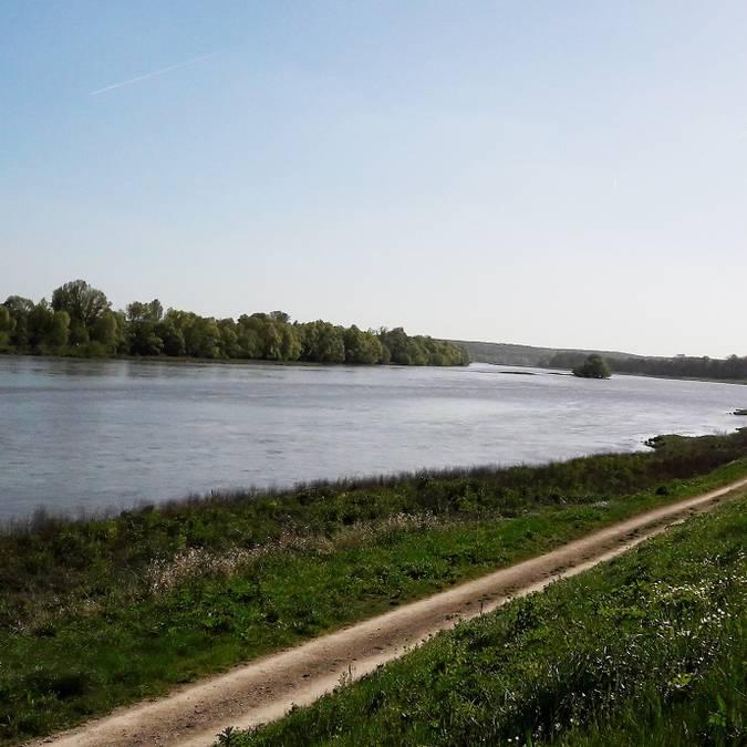Loire-Ufer in Chouzy-sur-Cisse