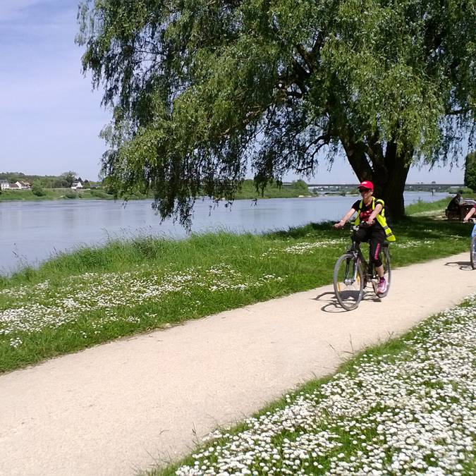 Fahrradweg an der Loire