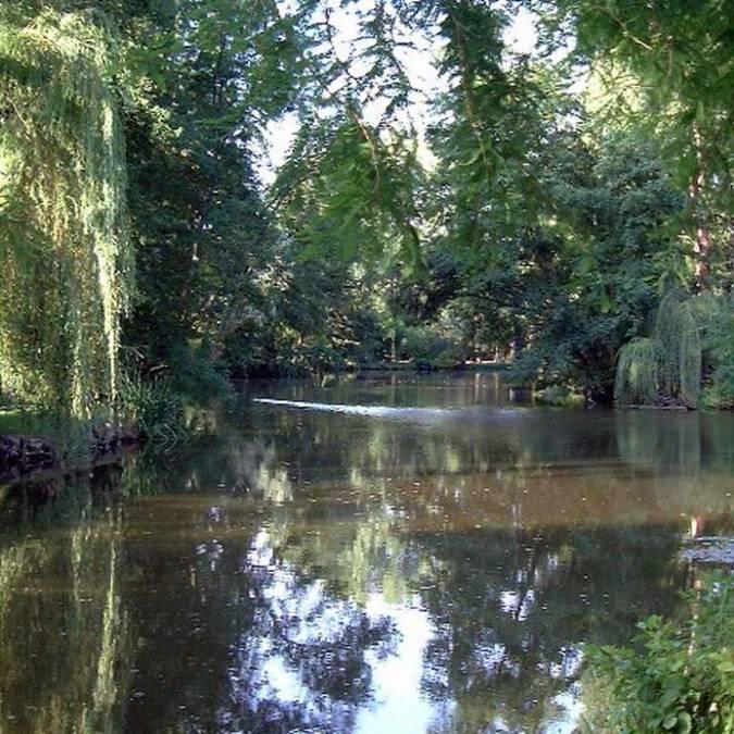 Fluss im Gebiet Blois-Chambord: der Beuvron