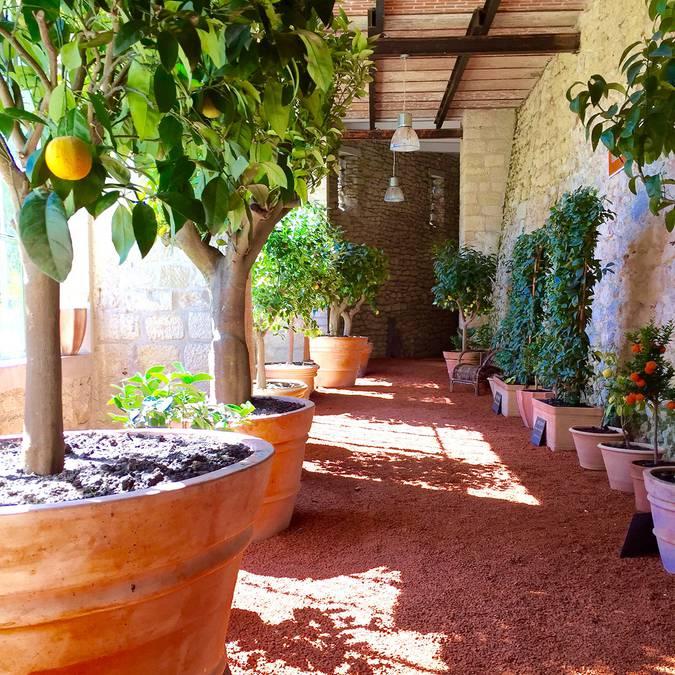 Die Gartenanlage von Château Gaillard © OTBC